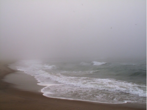 Beach Fog 5