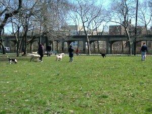 ppl in park